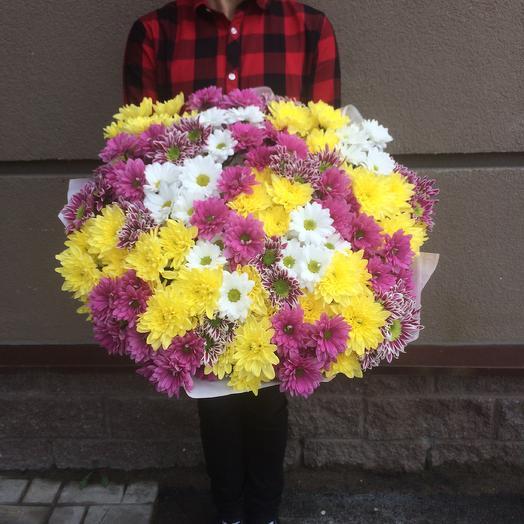 Моно букет из хризантем: букеты цветов на заказ Flowwow