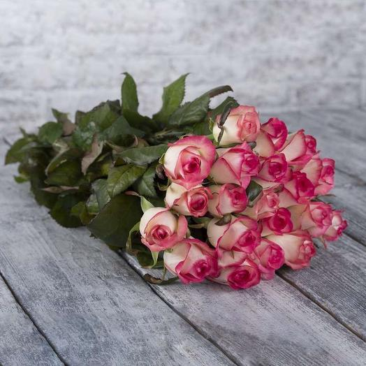 Роза джамила 19