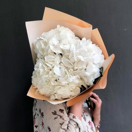 Белые гортензии 3: букеты цветов на заказ Flowwow