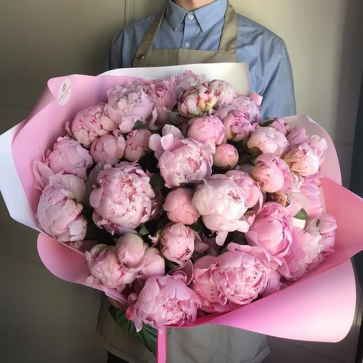 49 голландских пионов Premium: букеты цветов на заказ Flowwow