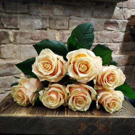 Роза пудровая 7