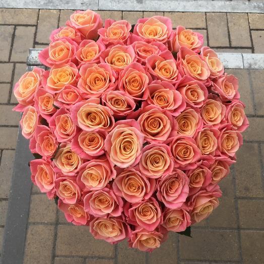 51 роза «Нежность»