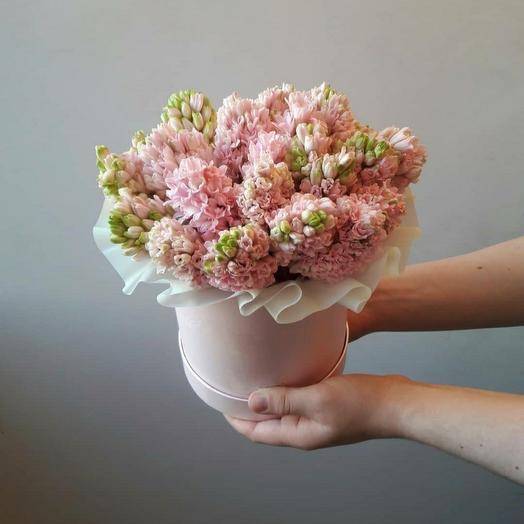 """Коробка""""25 розовых гиацинтов"""""""