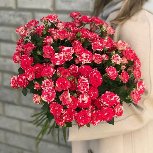 Монобукет из кустовой розы Анастасия