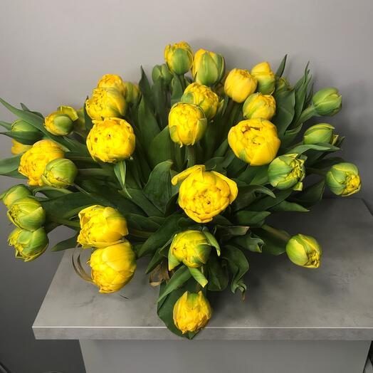 Букет роскошных пионовидных тюльпанов