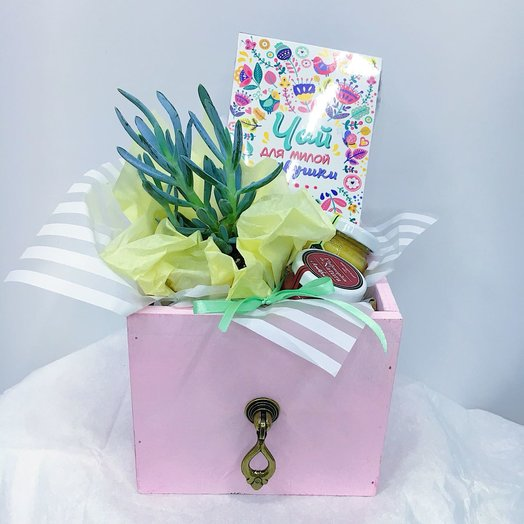 Подарок с растением: букеты цветов на заказ Flowwow