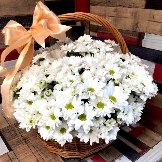 Chamomile: букеты цветов на заказ Flowwow