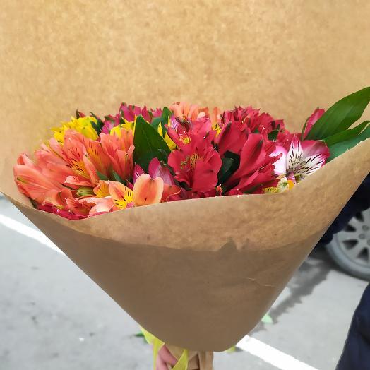 Альсьромерия: букеты цветов на заказ Flowwow
