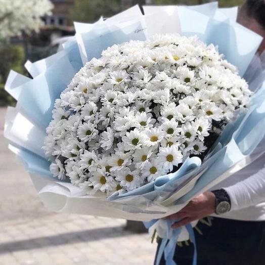 15  кустовых хризантем в Упаковке