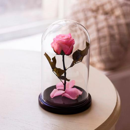 Роза в колбе «Premium» розовая