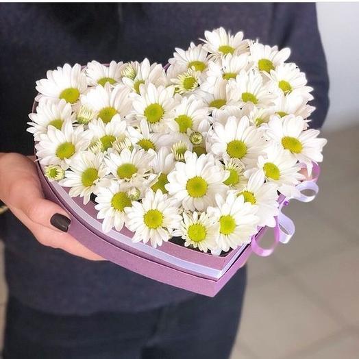 Цветы в коробке Белая ромашка