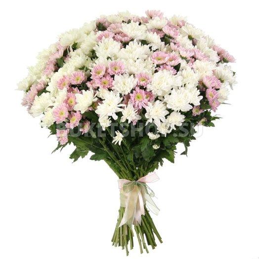 Нежные хризантемки: букеты цветов на заказ Flowwow