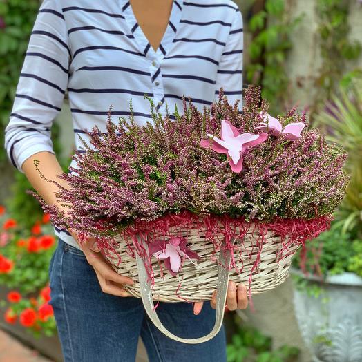 Ароматный вереск: букеты цветов на заказ Flowwow