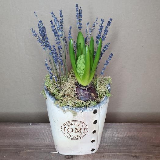 Красавчик: букеты цветов на заказ Flowwow