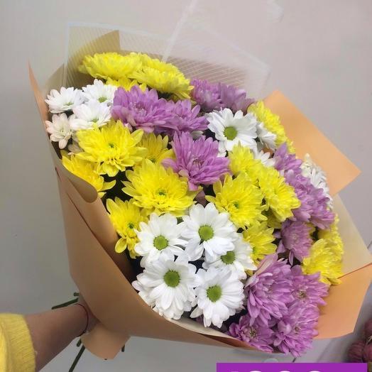11 разноцветных хризантем