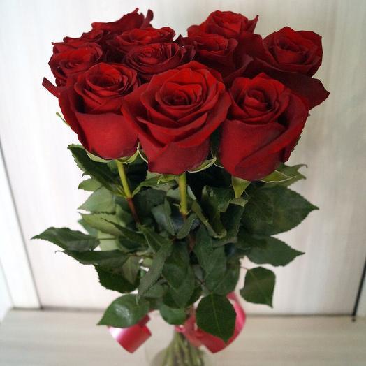 Роза эксплоер 11 шт