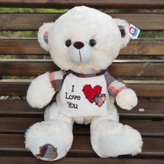 Teddy in a shirt)