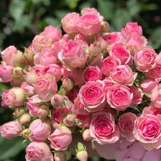 Букет из кустовой розы 9 шт