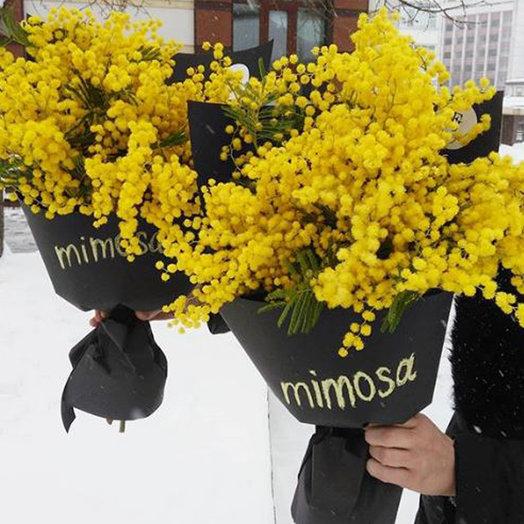 Мимоза : букеты цветов на заказ Flowwow