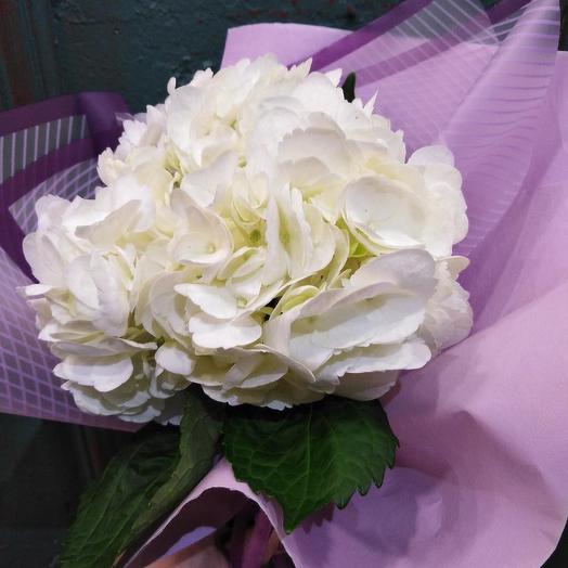 Прелестница: букеты цветов на заказ Flowwow