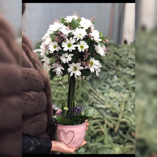 Дерево: букеты цветов на заказ Flowwow