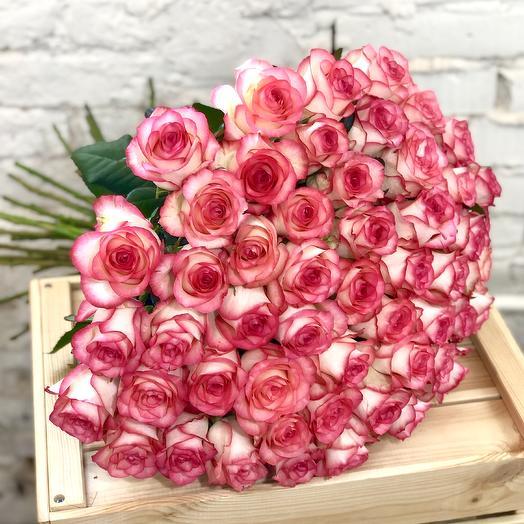 51 роза розовая Джумилия