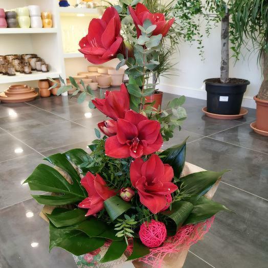"""Букет с амариллисом """"Чары любви"""": букеты цветов на заказ Flowwow"""