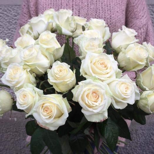 Rose white: flowers to order Flowwow