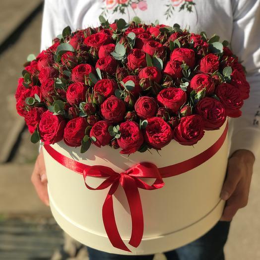 Коробка XXL из 101 кустовой пионовидной розы Ред Пиано. N613: букеты цветов на заказ Flowwow