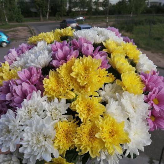 Чудесные кустовые хризантемы💛: букеты цветов на заказ Flowwow