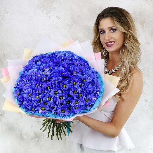 Букет из 25 синих хризантем