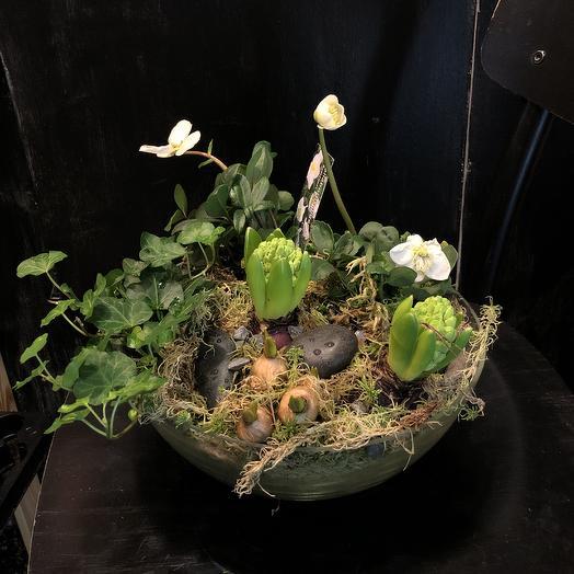 Весна в каждый дом: букеты цветов на заказ Flowwow