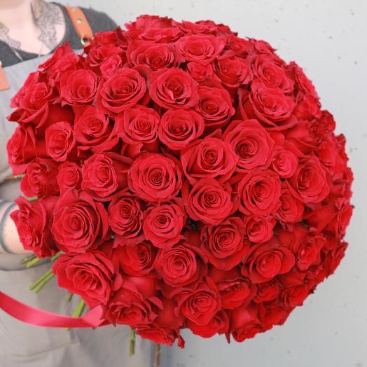 Красные розы 101