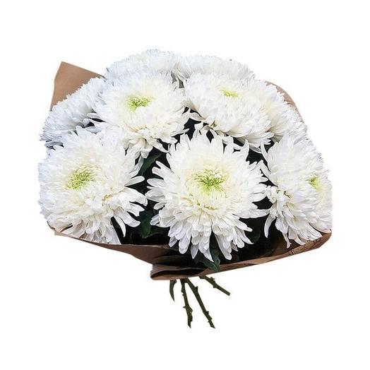 9 хризантем Антонов: букеты цветов на заказ Flowwow