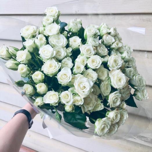 Белые кустовые розы 61