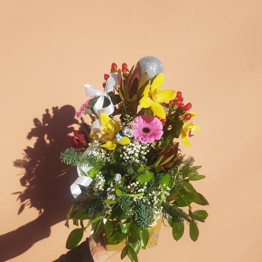 Корзина с орхидеями и нобилис