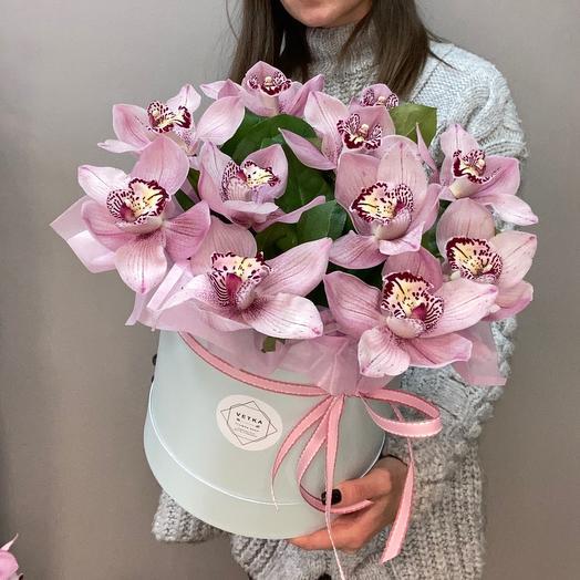 11 орхидей в коробке