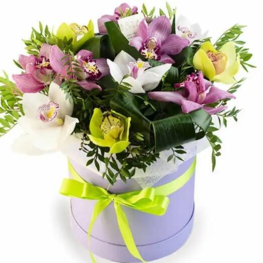 Орхидеи в коробке 11шт