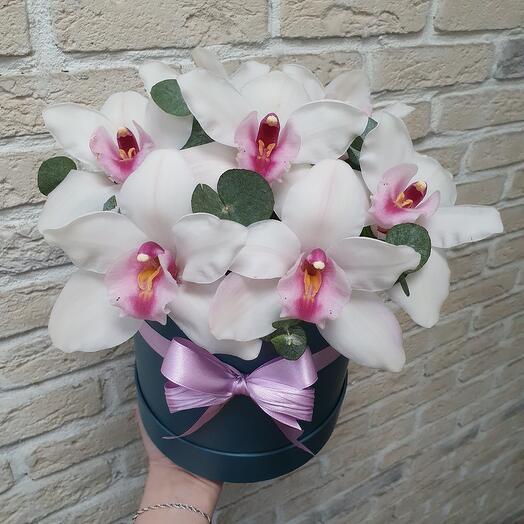 Орхидейный