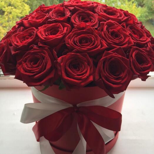 Роза красная в коробке