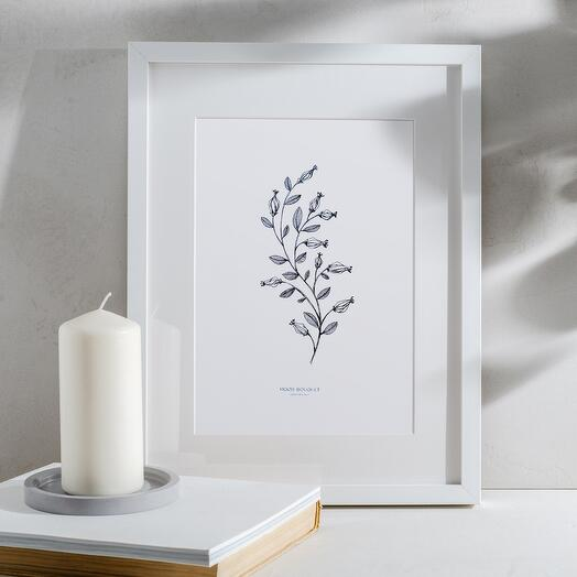Botanical graphics