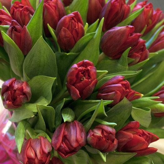 Тюльпаны бордо: букеты цветов на заказ Flowwow