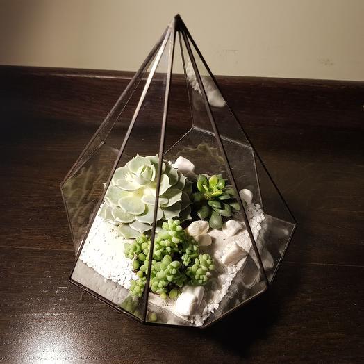 Флорариум White: букеты цветов на заказ Flowwow