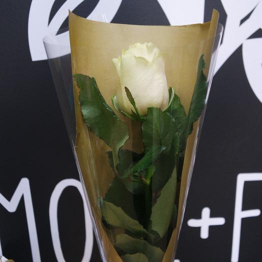 Корпоративный 6: букеты цветов на заказ Flowwow