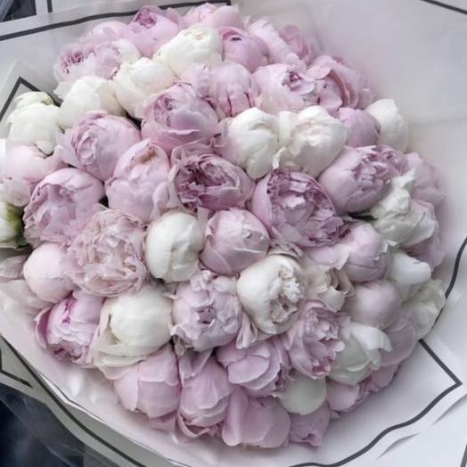 51 ароматный Пион  Премиум: букеты цветов на заказ Flowwow