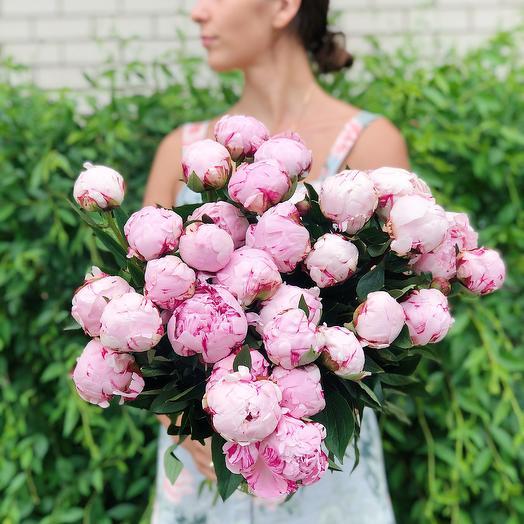 Букет из 27 розовых пионов: букеты цветов на заказ Flowwow