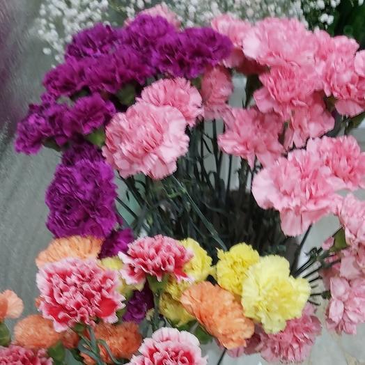 Микс гвоздика: букеты цветов на заказ Flowwow