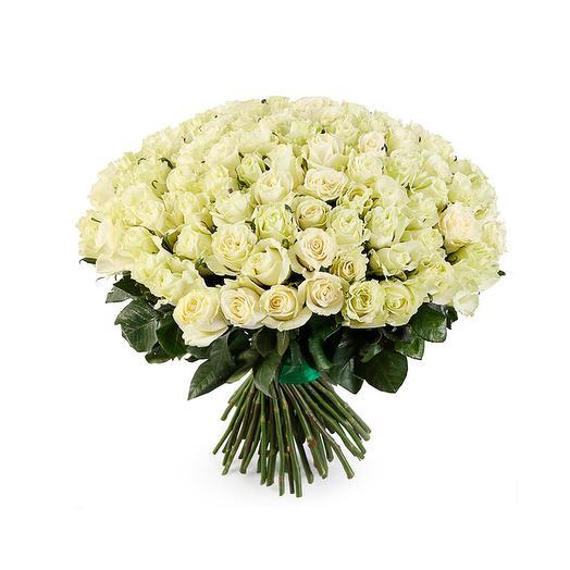 101 белая роза Мондиаль Эквадор (70 см)
