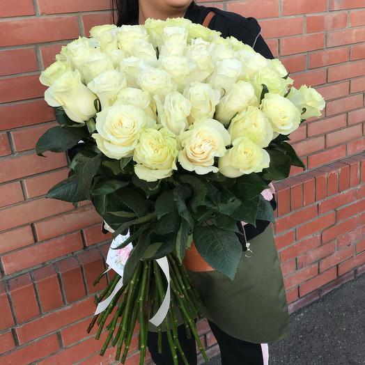 Роза « Мондиаль»