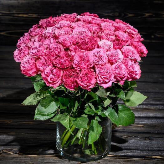 25 Кантри Люкс Pro. VIP мировой селекции роз